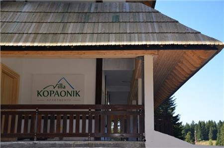 Vila Kopaonik