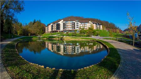 Terme olimia slovenija wellness spa for Wellness hotel slovenia
